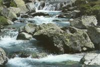 Areuabach im hinteren Val Curciusa (GR) (copyright SGS)